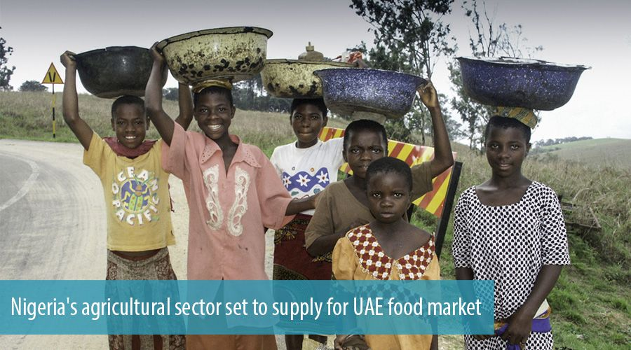 Nigeria's agricultural sector set to supply for UAE food market
