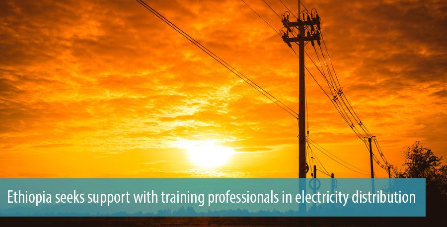 Ethiopia seeks support with training professionals in electricity distribution