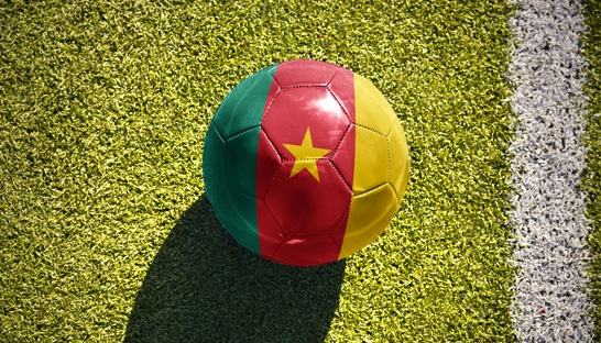 CAF hires Roland Berger to review infrastructure of AFCON 2019